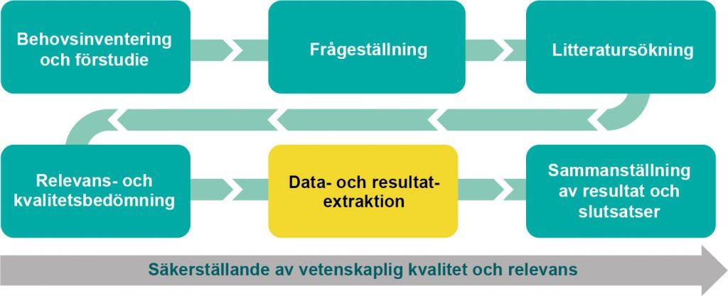 Bild över arbetsgången som markerar data- och resultatextraktion