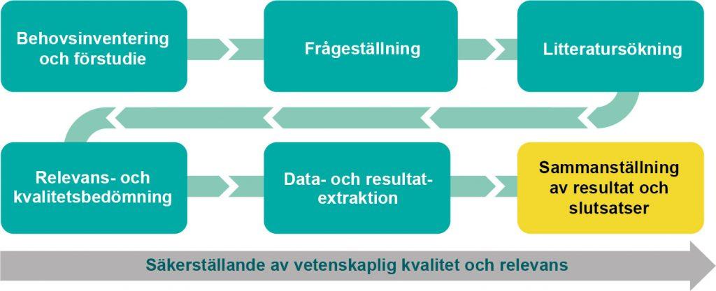 Bild som visar arbetsgången där rutan för sammanställning av resultat och slutsatser är markerad för systematiska översikten om svårigheter i det sociala samspelet inom idott och hälsa