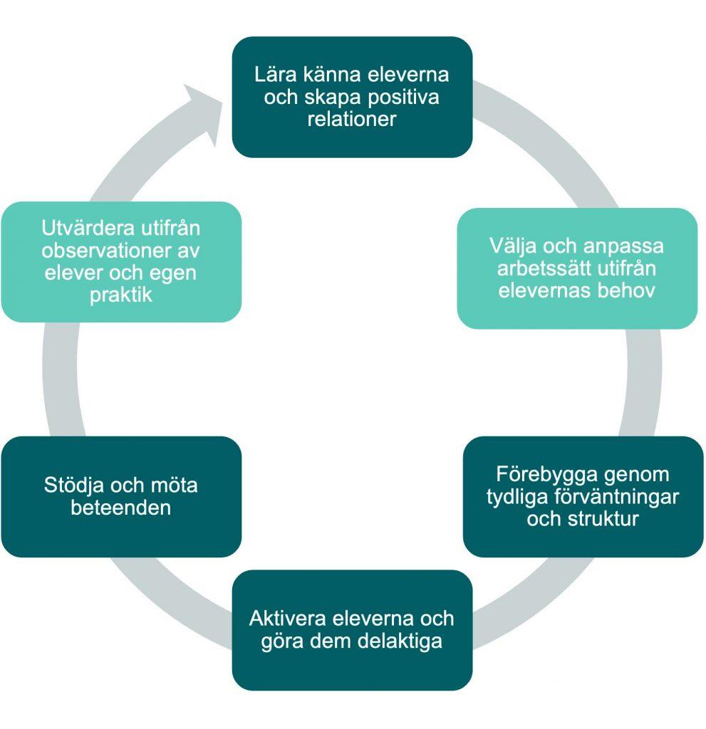 Cyklisk process: Lära känna eleverna och skapa positiva relationer. Välja och anpassa arbetssätt utifrån elevernas behov. Förebygga genom tydliga förväntningar och struktur. Aktivera eleverna och göra dem delaktiga. Stödja och möta beteenden. Utvärdera utifrån observationer av elever och egen praktik.